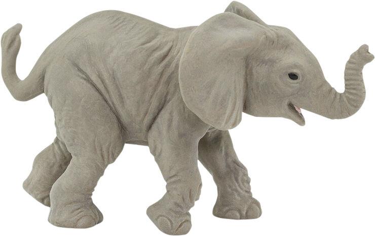 Afrikansk elefantunge