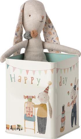 Happy day bunny in box, Medium