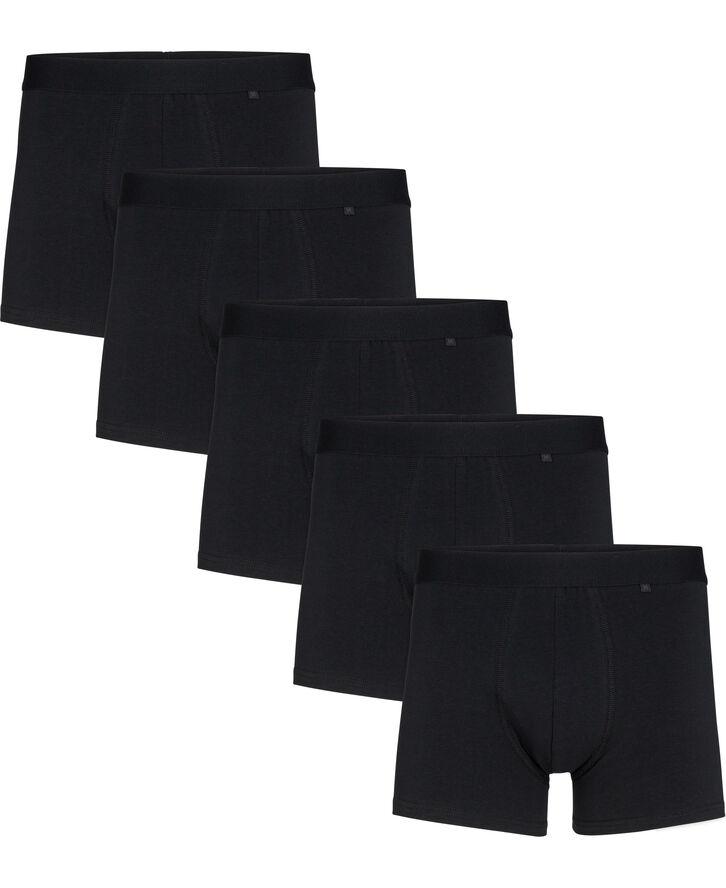 Hr trunk Morley 5-pack