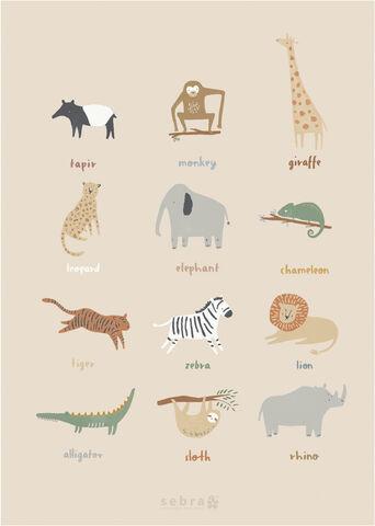 Plakat, Wildlife